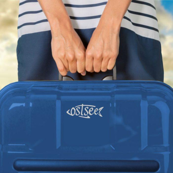 Aufkleber Ostsee Fisch Laptoptasche